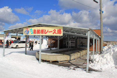 風間浦村鮟鱇祭り2016-4