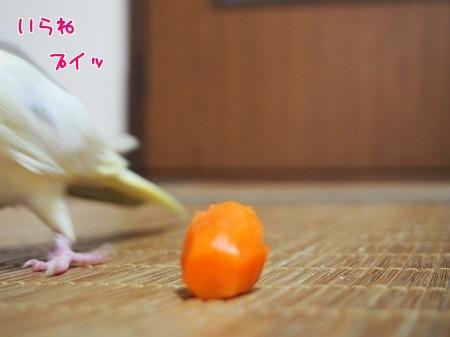 食べる気な~い