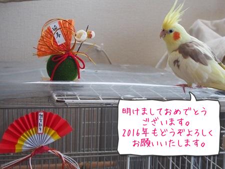 よろしくお願いします(#^.^#)