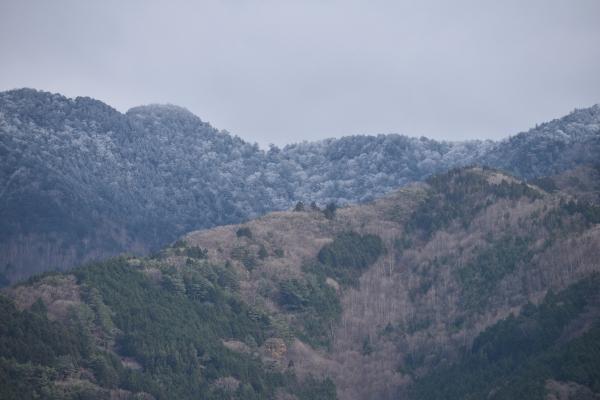 151127-加子母の初雪