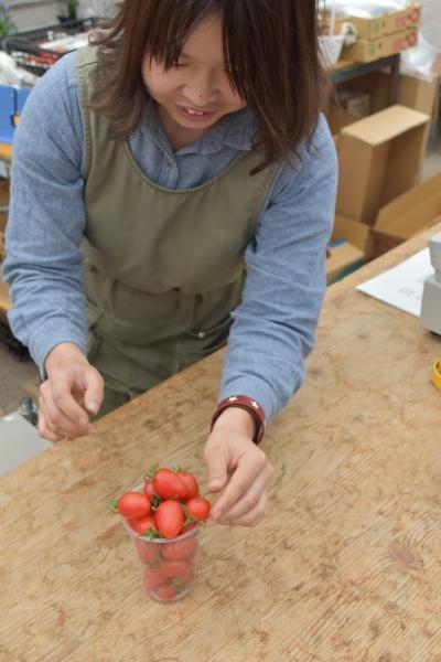 160307-産直のミニトマト06