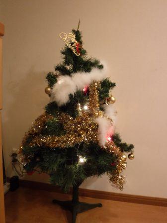 1クリスマス2015 5-3