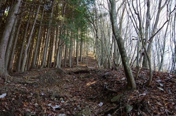 鷹ノ巣山10