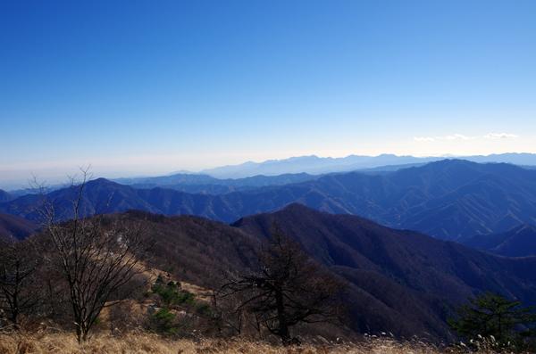 鷹ノ巣山21