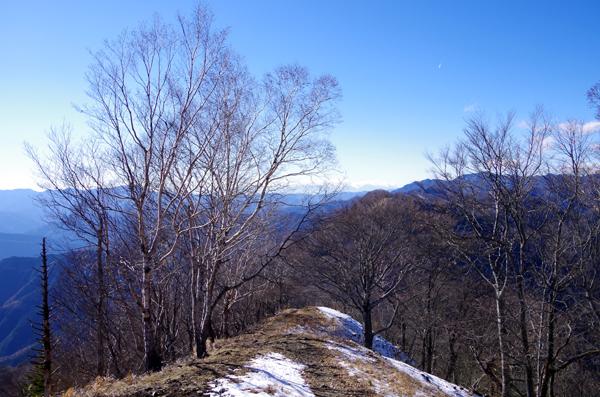 鷹ノ巣山22