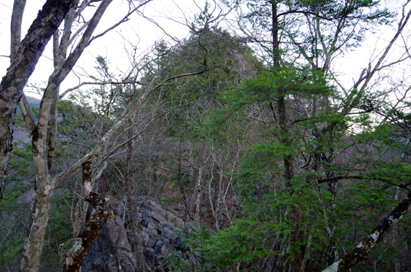 鷹ノ巣山29