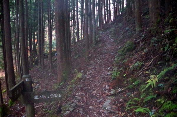 鷹ノ巣山30
