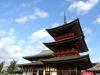 NaritaSanOreiMode2015_123115_038.jpg