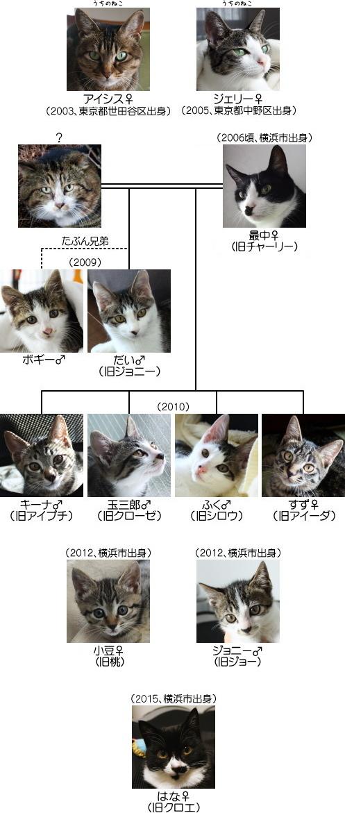 猫の系図、完成版(きっと)
