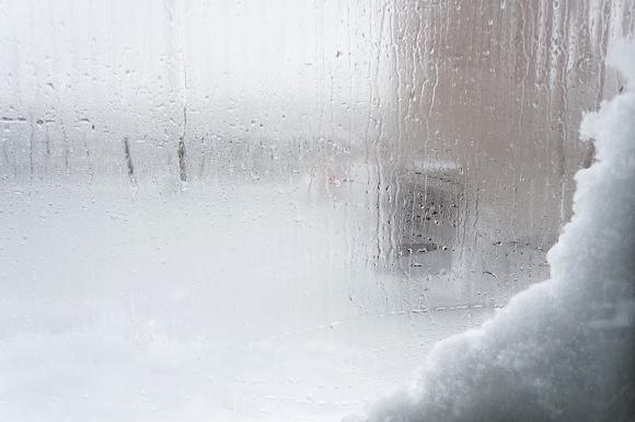 この辺じゃ大雪