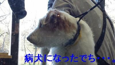 20151228_111930.jpg
