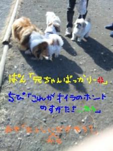 SH3J0454.jpg