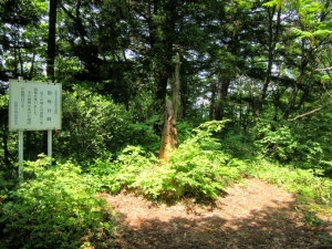 栃尾城/狼煙台