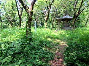 栃尾城/松の丸