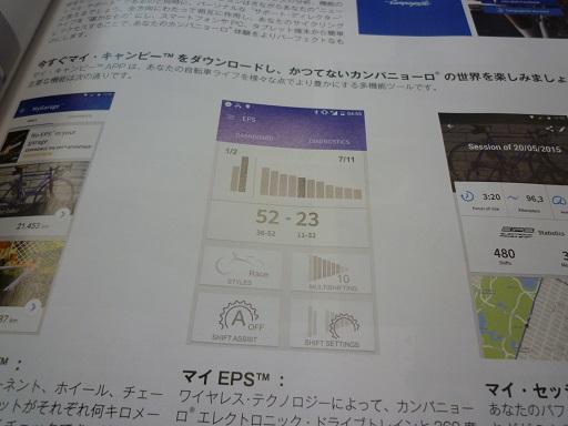P1050541.jpg