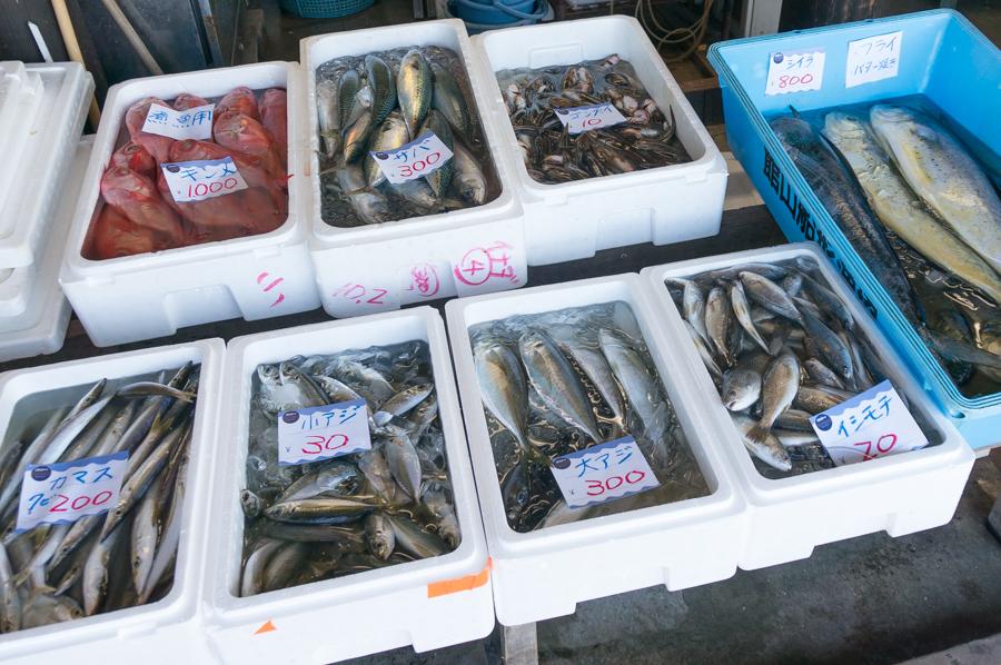 魚も売ってる