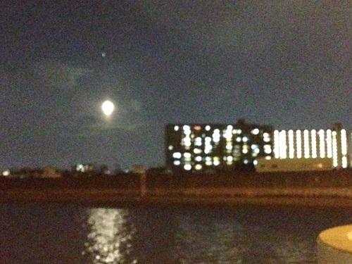 月明かりの下で-自然の力に癒される-2