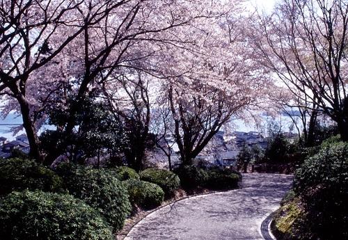 モテる女の季節の変わり目ダイエット~冬から春に向けて~(実践編)3