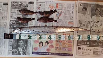 TYOUKA20151210.jpg