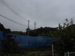 根府川分岐線4号