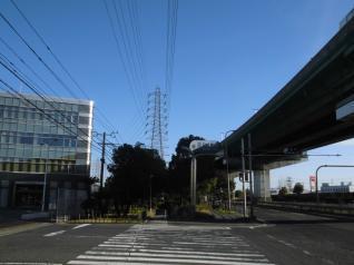 堺港第5区線8号
