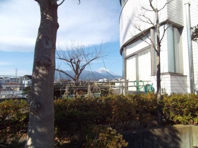 福祉会館(福祉団体作業室、ボランティアルーム)側から富士山も撮ったデジカメ写真