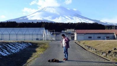 富士山を背景にした革ジャンを脱ぎ次はシャツを脱ぎはじめた僕を友人がネオ一眼レフカメラで撮影