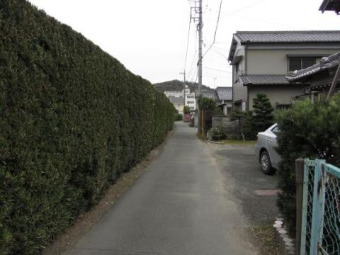 東海道岩屋山古道
