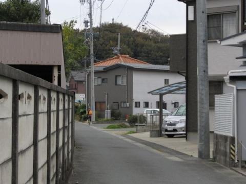 東海道岩屋山古道02