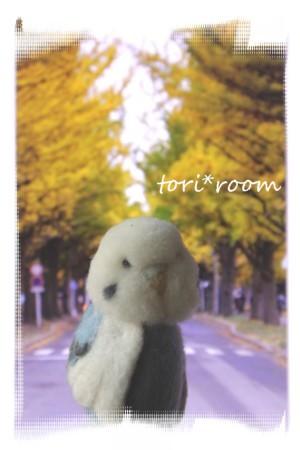 ハノリン*北大イチョウ並木