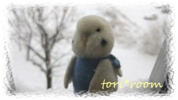 ハノリン*寒い