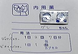 20151206グレ坊の薬