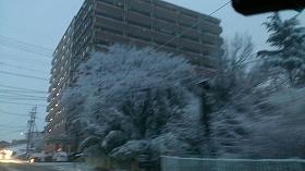 2016309雪