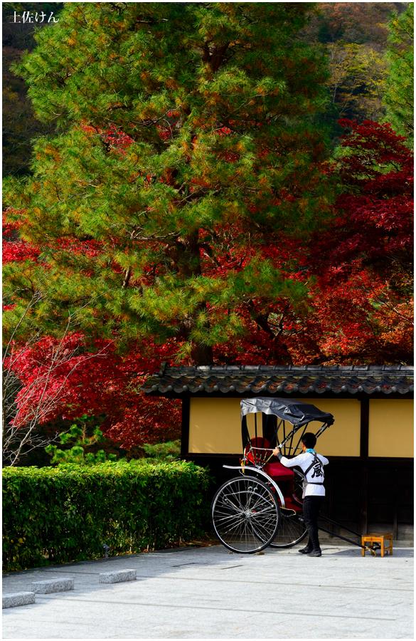 秋の京都5