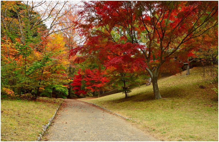 神戸森林植物園・助手2