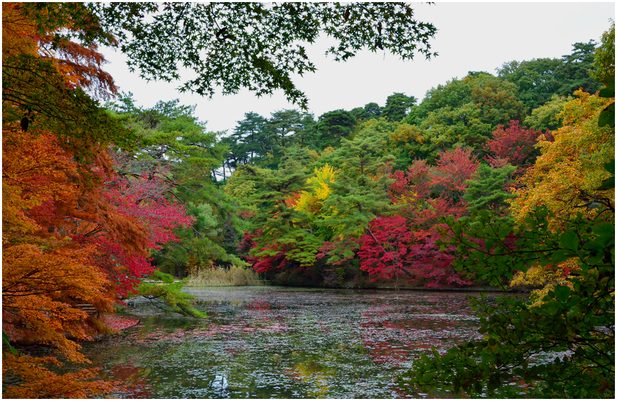 神戸森林植物園・助手4