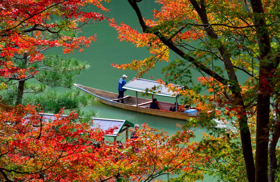 秋の京都・助手5