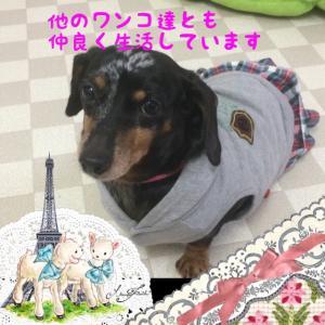 fc2blog_201601132056473a8.jpg
