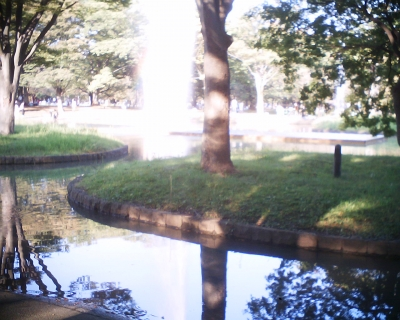 噴水に虹・代々木公園:R2