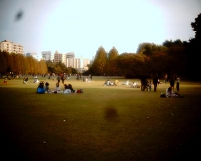 見えていた東京タワーが・・・:Entry