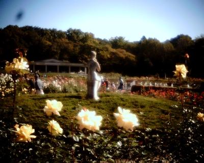 バラと像・神代植物公園:Entry
