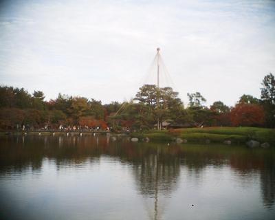雪吊り・昭和記念公園:R2