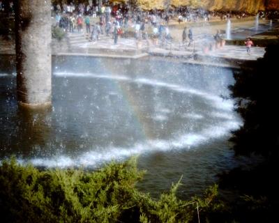 噴水の虹・昭和記念公園:Entry