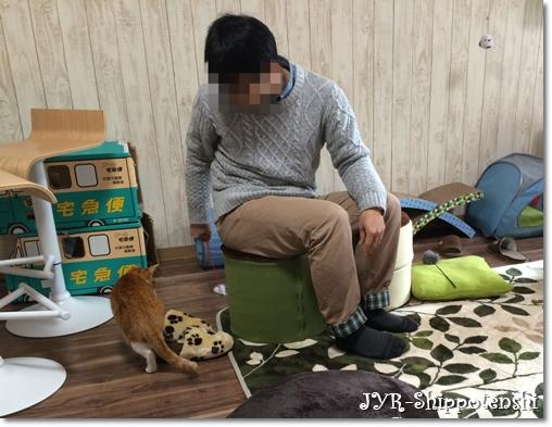 sakura160127_3.JPG