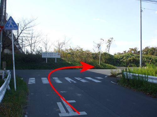 karishiki2.jpg