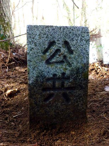 marumori_o_z9.jpg