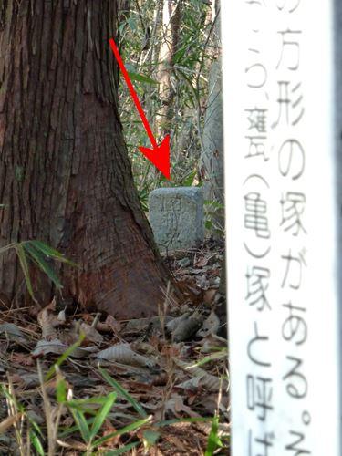 uchikoshi15.jpg