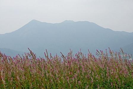 PM25かすむ山々 DSC02569