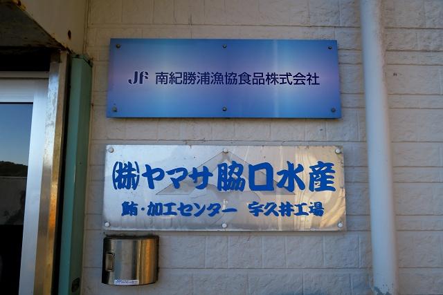 160124-勝浦まぐろツアー-003-S