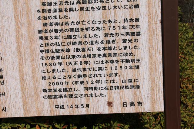 IMG_4096.jpg
